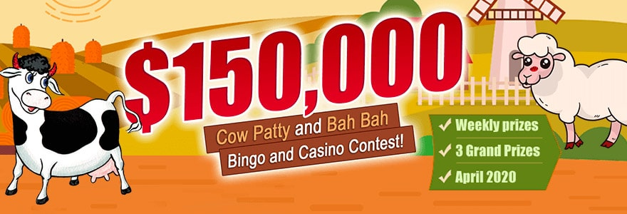 Join AmigoBingo for $150,000 Cow Patty and Bah Bah Bingo and Casino Contest!